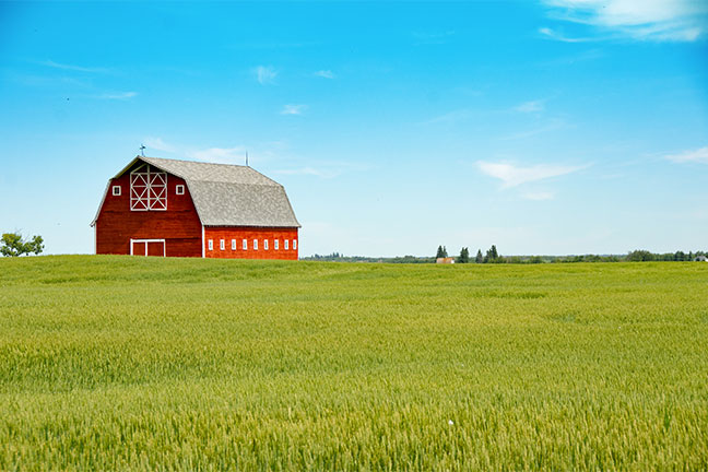 red barn in green field on sunny day