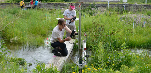 researchers taking measurements at the stream lab