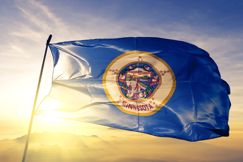 Minnesota state flag waving in the wind with the sun behind it.