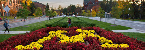 View of campus from Pillsbury Drive with block M designed in landscape with flowers