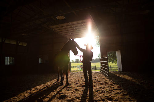 A horse is comforted by a man in a barn with sundown visible through the open door behind them