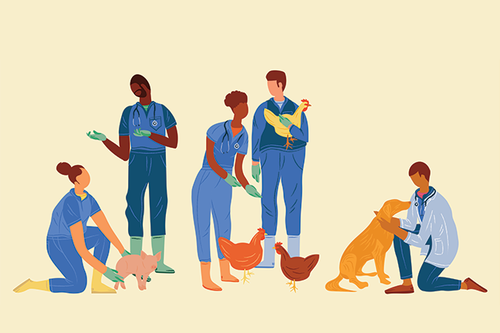 a drawing of doctors helping animals Photo credit: Artwork by Megan Murrell.