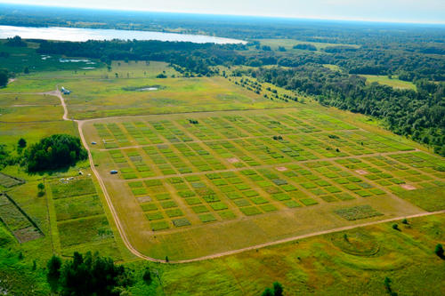 Aerial view of experimental plots at Cedar Creek. Photo: Jacob Miller