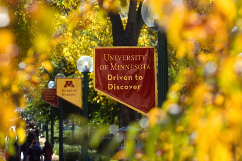 A maroon banner with gold text reading: University of Minnesota, Driven to Discover hangs off a lamp post along the Northrop Mall on the Twin Cities campus